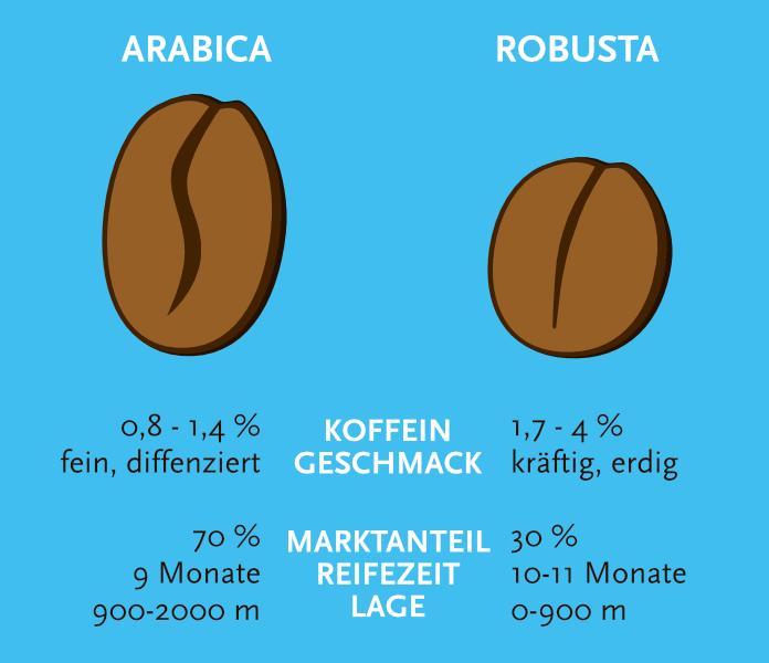 unterschiede von arabica und robusta