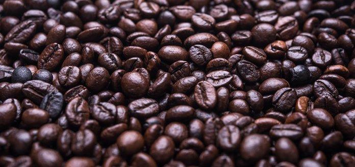 der anbau von bio-kaffee in mischkulturen