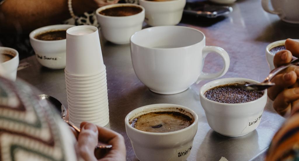 kaffee verkostung für kaffeeröster