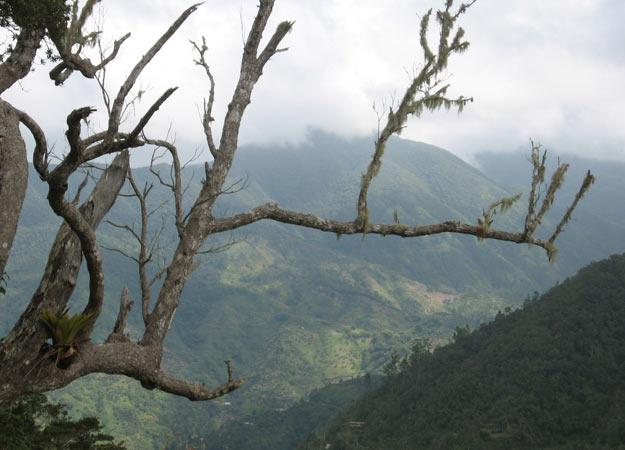 jamaika-blue_mountains