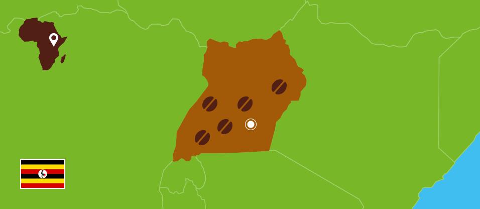 Kaffeezentrale_Kaffeeanbau_Uganda_RZ