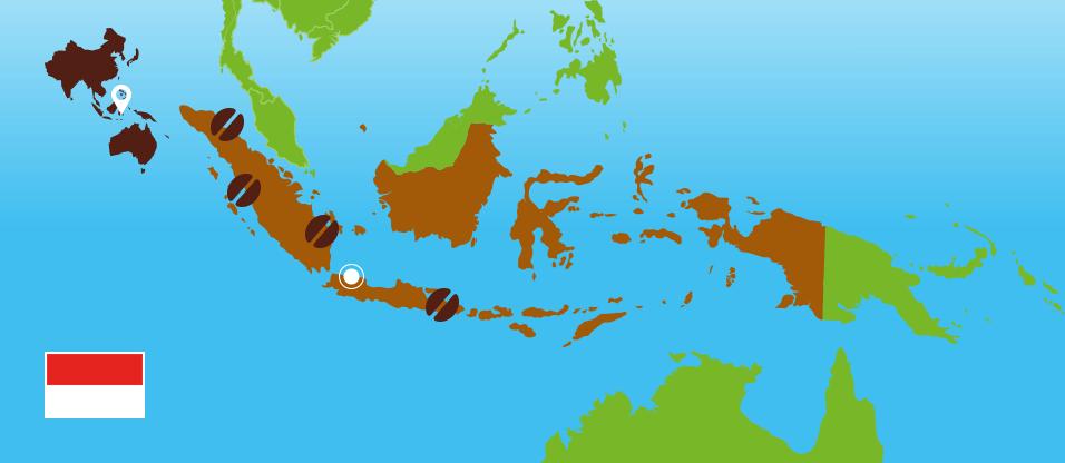 Kaffeezentrale_Kaffeeanbau_Indonesien_RZ