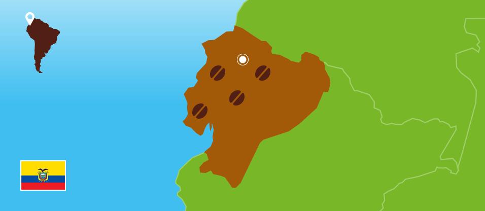 Kaffeezentrale_Kaffeeanbau_Ecuador_RZ