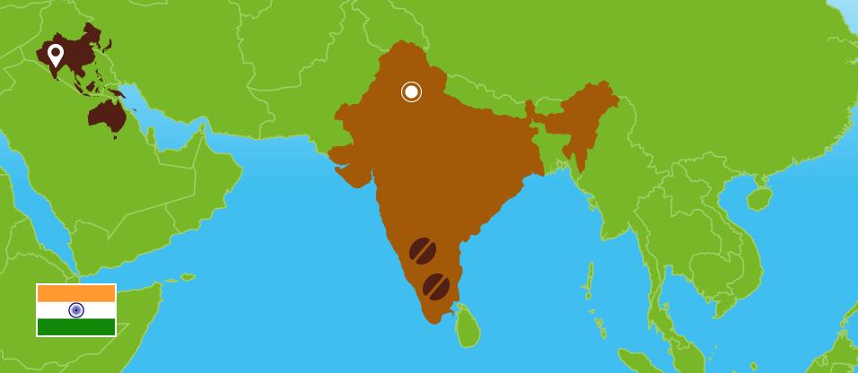 Kaffeezentrale_Kaffeeanbau_Indien_RZ
