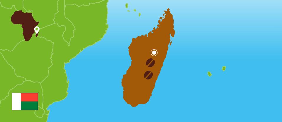 Kaffeezentrale_Kaffeeanbau_Madagaskar_RZ