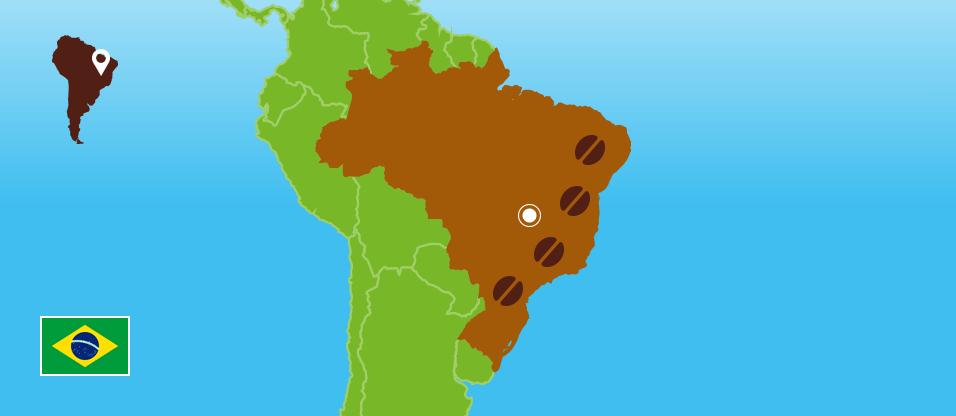 Kaffeezentrale_Kaffeeanbau_Brasilien_RZ