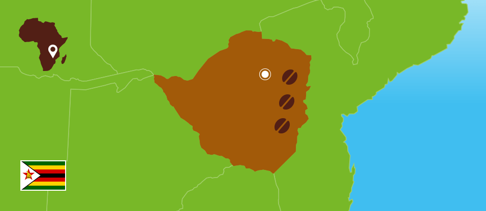 Kaffeezentrale_Kaffeeanbau_Simbabwe_RZ