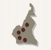 KAZ-Illu_Kamerun_RZ