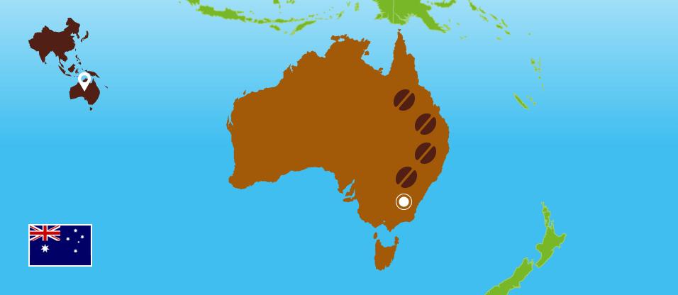 Kaffeezentrale_Kaffeeanbau_Australien_RZ